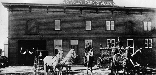 Stray cattle and horses to be curbed, verandah damaged by runaway team – April 29, 1889