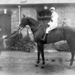 "1889 photograph of horse ""Forfarshire"""